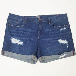 New York & Co Stretch Distressed Denim Shorts 12